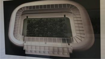 Ein Wald im Wörthersee-Stadion