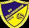 SV Zillingdorf