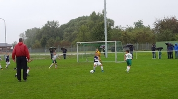 Hammarby IF : FK Austria Wien