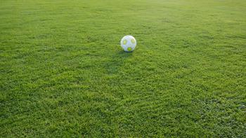 Sportwetten abgeben: Warum macht das so viel Spaß?